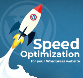 Speed Optimization for your WordPress website